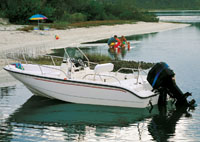 Center Console - Inshore Fishing